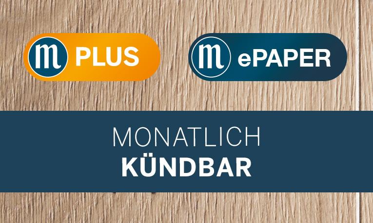 ePaper + M-Plus
